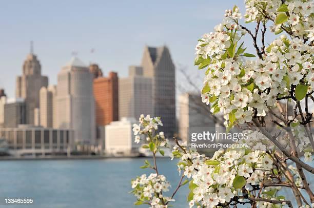 Detroit Skyline in Spring