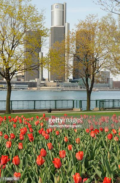 Detroit Spring
