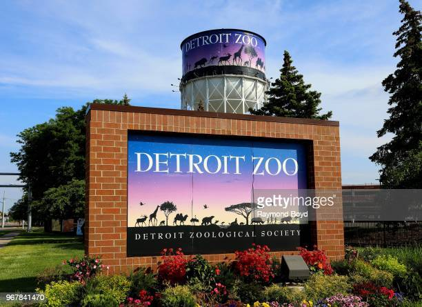 671 Detroit Zoo Photos And Premium High Res Pictures Getty Images