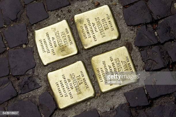 Deutschland Berlin Mitte Stolpersteine Gedenksteine im Strassenpflaster für die Opfer des Holocaust in der Rosenthaler Strasse vor dem Zugang zu den...