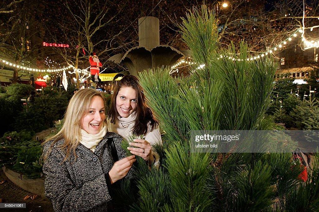 Weihnachtsbaum Fun.Weihnachtsbaum Von Traumbaum Am Adenauerplatz Zwei Frauen Suchen