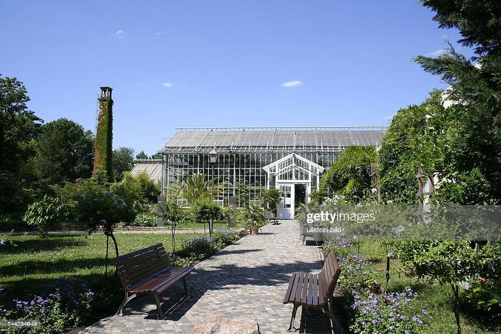 Deutschland Brandenburg Potsdam Treibhaus Im Botanischen Garten
