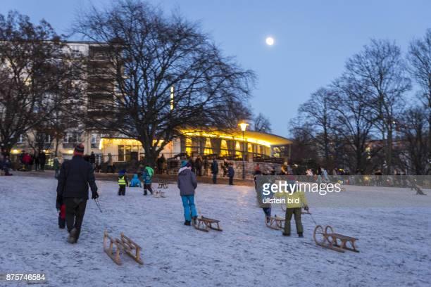 DEU Deutschland Germany Berlin Schlittenfahren im Weinbergspark in BerlinMitte