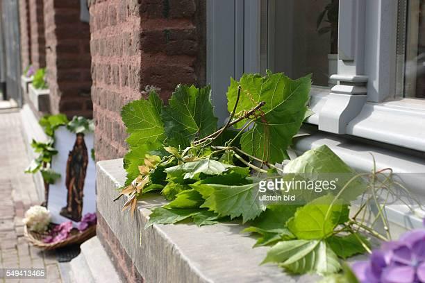 jaehrliche Rochustracht bzw Prozession zu Ehren des heiligen Rochus Patron gegen den Schwarzen Tod die Pest zudem wird Weinlaub auf die Fensterbaenke...