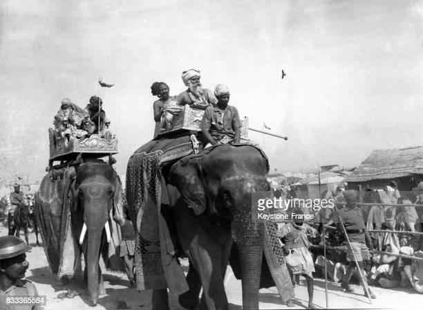 Deux éléphants pendant la procession du festival Kumbh Mela à Allahabad Inde