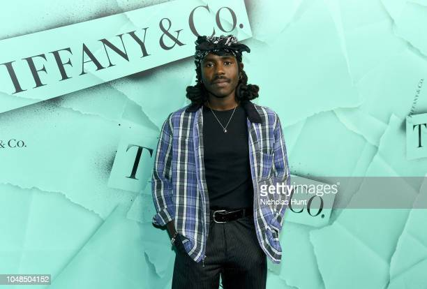 Dev Hynes attends Tiffany Co Celebrates 2018 Tiffany Blue Book Collection THE FOUR SEASONS OF TIFFANY at Studio 525 on October 9 2018 in New York City