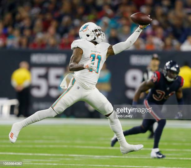 DeVante Parker of the Miami Dolphins makes a one handed catch in the fourth quarter against the Houston Texans at NRG Stadium on October 25 2018 in...