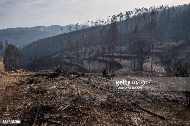 A devastated landscape seen on Pereiro Cimeiro area after the previous day forest fire on August 15 2017 in Vila de Rei Portugal More than a thousand...