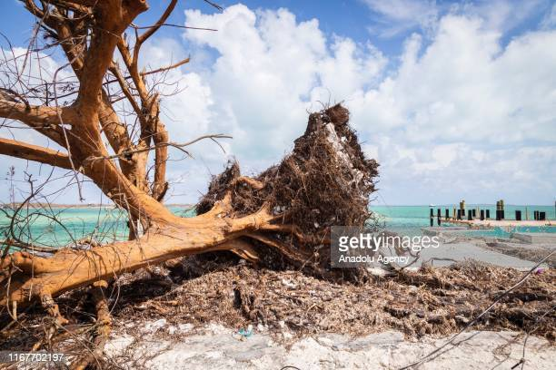 Devastation in Marsh Harbour on September 10, 2019 in Grand Bahama, Bahamas. The official death toll has risen in the time since to 50 people, but...