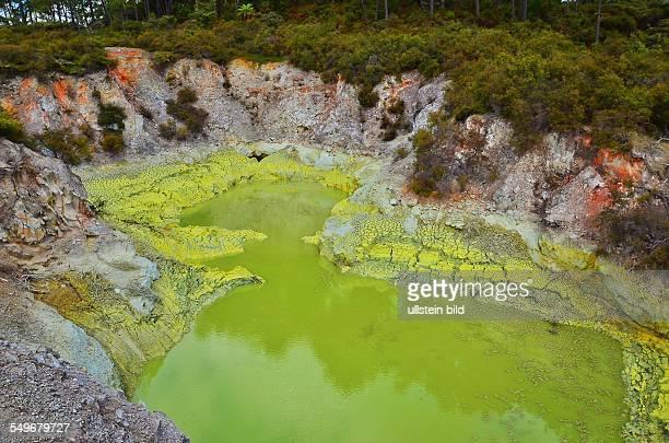 Devil's Bath lake im 18 qkm grossen ThermalErlebnispark WaioTapu Es ist das farbenpraechtigste Thermalfeld Neuseelands