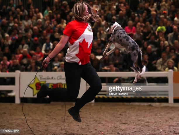 TORONTO ON NOVEMBER 4 Devin jumps rope with Drama a whippet border collie cross during the Super Dogs Show at the Royal Agricultural and Winter Fair...