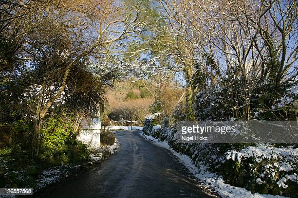 a devon lane in snowy conditions, lustleigh, dartmoor national park, devon, great britain. - newpremiumuk stock pictures, royalty-free photos & images