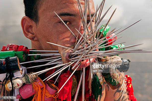 CONTENT] A devotee of the Chinese shrine of Bang Neow pierced his cheeks lips and tongue with steel needles during a procession during the Vegetarian...