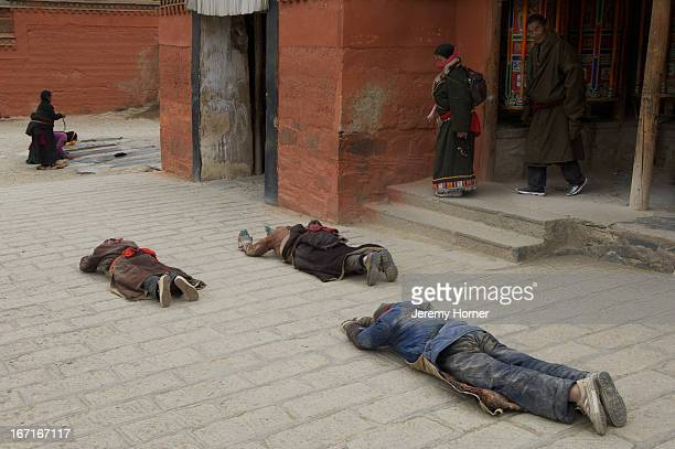 Devout pilgrims prostrate themselves thousands of times in their arduous quest for enlightenment Labrang Monastery Gansu Province China Labrang...
