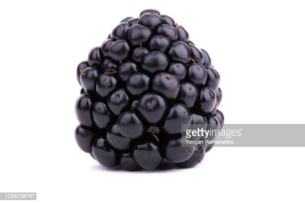 dewberry on white background - blackberry fruit stock pictures, royalty-free photos & images