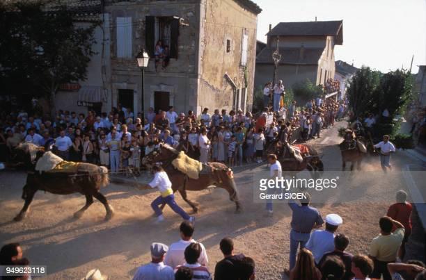 Défilé de la charrette de Saint Eloi à Mollégès dans les BouchesduRhône France