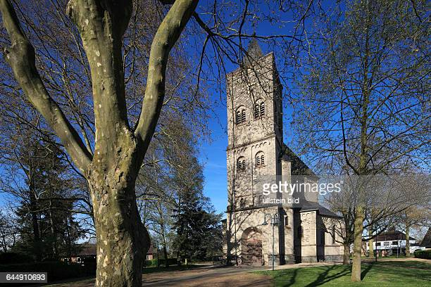 DGoch Niers Lower Rhine Rhineland North RhineWestphalia NRW DGochAsperden parish church St Vincentius catholic church neoRomanesque tree trunk