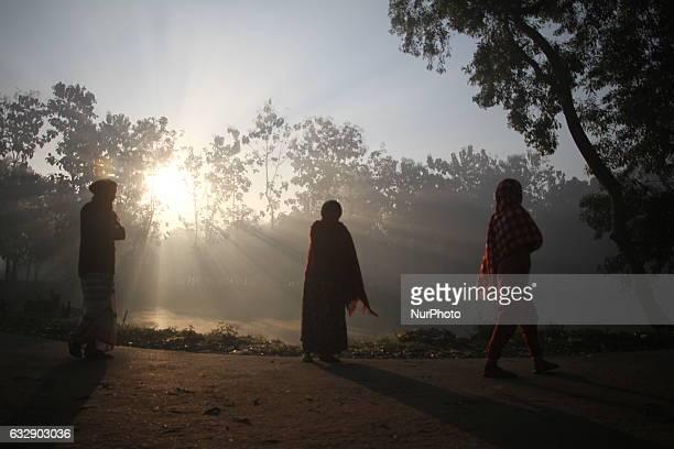 Dhaka Bangladesh January 26 2017 Bangladeshi villager walks through during the sunrise at a village in Gazipur outskirts of Dhaka Bangladesh on...