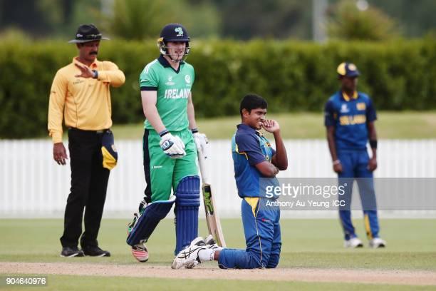 Dhananjaya Lakshan of Sri Lanka reacts during the ICC U19 Cricket World Cup match between Sri Lanka and Ireland at Cobham Oval on January 14 2018 in...