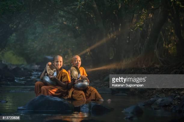 Dharma light
