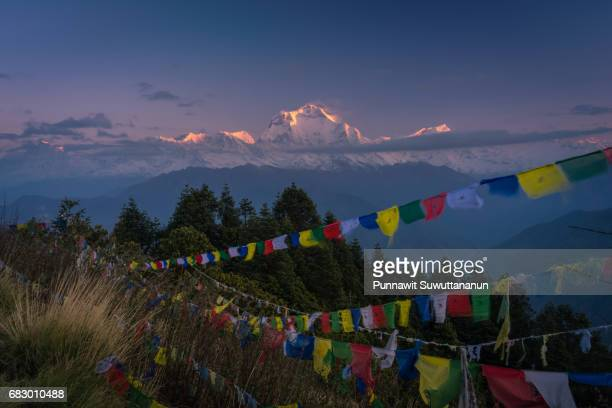 Dhaulagiri mountain peak at sunrise from Poon Hill view point, ABC, Pokhara, Nepal