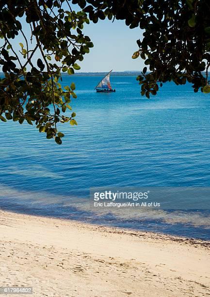 Dhow sailing, island of mozambique, Mozambique on July 16, 2013 in Island Of Mozambique, Mozambique.