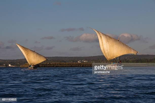 Dhows sailing, stone Town Harbor, Zanzibar, Tanzania