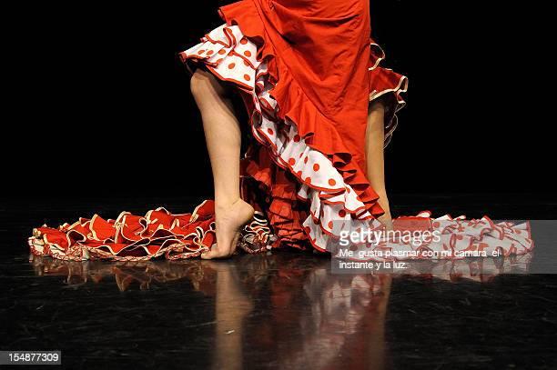 Dia de la Danza 08 Contemporaneo y Fla