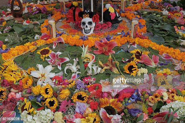 dia de los muertos oakland 2016 - day of the dead stock pictures, royalty-free photos & images