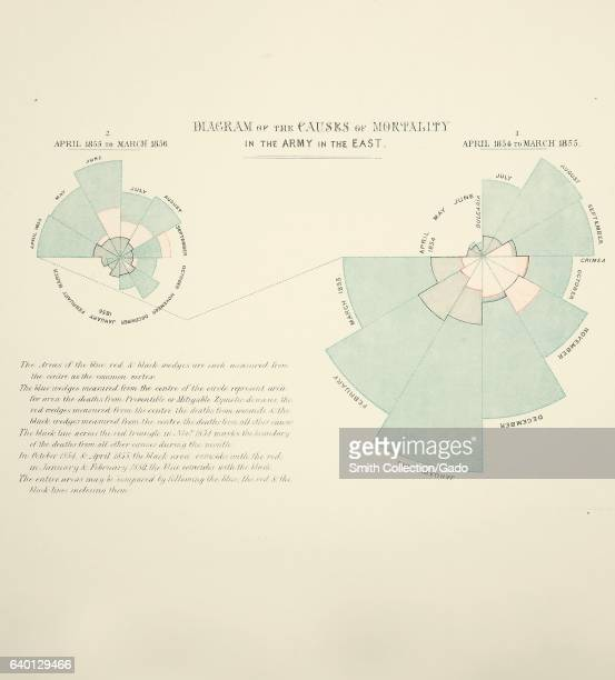 Diagrams showing the causes of mortality in British Army during Crimean War in Contribution to the sanitary history of the British Army during the...