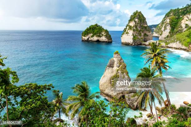 diamond beach in nusa penida bali - idyllic stock pictures, royalty-free photos & images