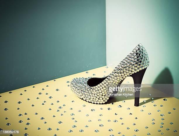 Diamond covered Shoe