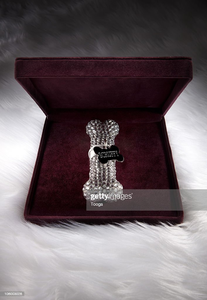 Diamond dog bone in velvet jewelry case : Bildbanksbilder