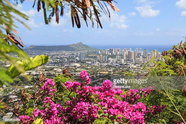 Diamond Head and Waikiki, Oahu, Hawaii