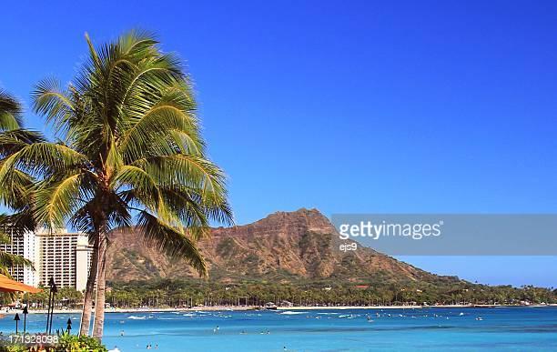 ダイヤモンドヘッドのヤシの木と太平洋の美しいビーチのオアフのハワイ