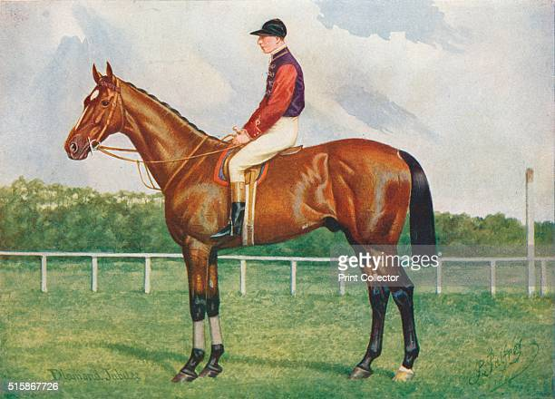 Diamond Jubilee circa 1905 Diamond Jubilee was a Britishbred thoroughbred racehorse and sire owned by King Edward VII From Live Stock in Health and...