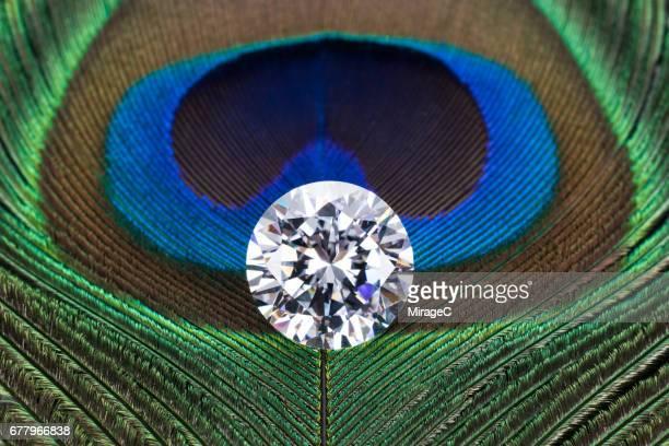 Diamond on Peacock Feather