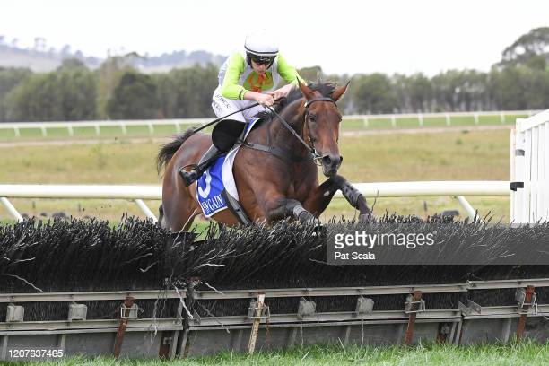Diamond Star Halo ridden by Shane Jackson clears a hurdle on the way to winning the Laurie Kenna OAM Memorial Hurdle at Terang Racecourse on March 19...