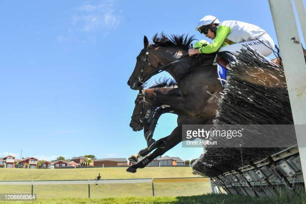 Diamond Star Halo ridden by Shane Jackson jumps during the Chirnside Plumbing Gasfitting Maiden Hurdle at Warrnambool Racecourse on March 12 2020 in...