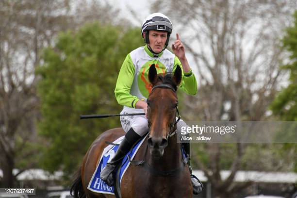 Diamond Star Halo ridden by Shane Jackson returns to scale after winning the Laurie Kenna OAM Memorial Hurdle at Terang Racecourse on March 19 2020...