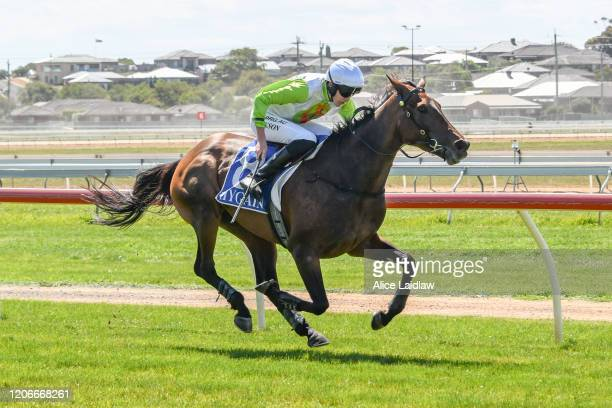 Diamond Star Halo ridden by Shane Jackson wins the Chirnside Plumbing Gasfitting Maiden Hurdle at Warrnambool Racecourse on March 12 2020 in...