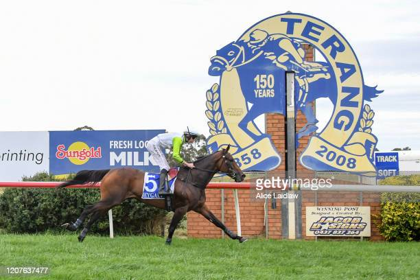 Diamond Star Halo ridden by Shane Jackson wins the Laurie Kenna OAM Memorial Hurdle at Terang Racecourse on March 19 2020 in Terang Australia