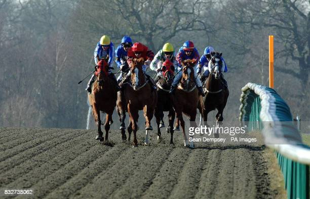 Diamonds and Dust ridden by Seb Sanders on the way to winning the Go Pontin's Claiming Stakes at Lingfield