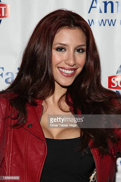 Diana Falzone attends the 2011 Paws For Style Benefit at the Muse Hotel on November 22 2011 in New York City