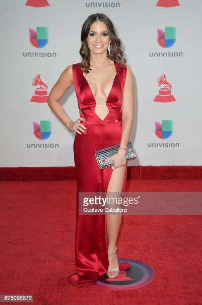 Diana Fuentes attends the 18th Annual Latin Grammy Awards at MGM Grand Garden Arena on November 16 2017 in Las Vegas Nevada