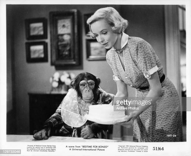 Diana Lynn presents chimp with birthday cake in a scene from the film 'Bedtime For Bonzo' 1951