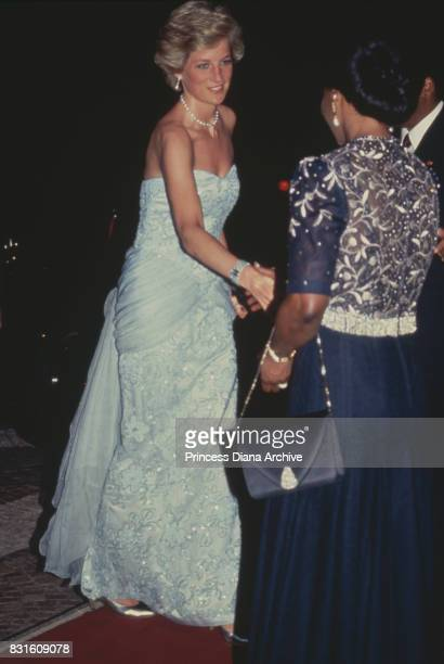 Diana, Princess of Wales attends a banquet at the president's palace in Yaounde, Cameroon, wearing a pastel blue Catherine Walker strapless evening...