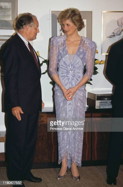 Diana, Princess of Wales attends a reception at the British Consulate in Dubai, in the United Arab Emirates, March 1989. She is wearing a cocktail...