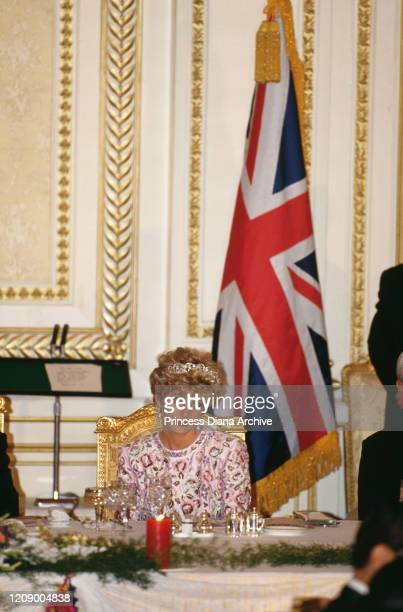 Diana, Princess of Wales attends a state banquet hosted by the South Korean President Roh Tae-woo at the Blue House in Seoul, South Korea, 3rd...