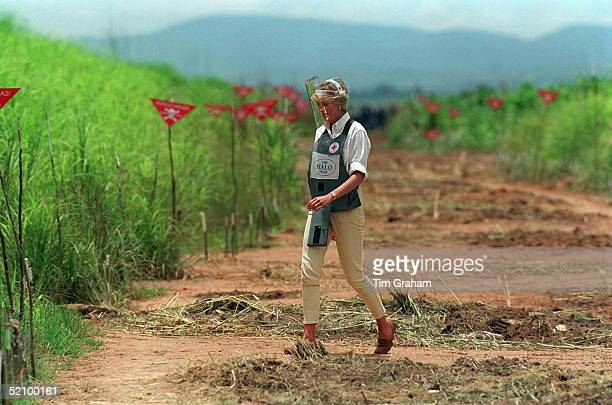 Diana Princess Of Wales Walking Through A Cleared Area Of A Mined Area Being Cleared By The Charity Halo Trust In Huambo Angola Wearing Protective...